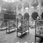 Exhibition photograph - 'Recent Acquisitions' exhibition in the great hall of the Museum of Applied Arts